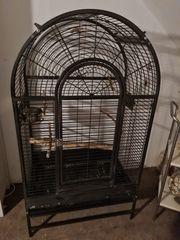 Vogel Voliere Montana