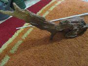 Aquarien Wurzel XXL 75cm x