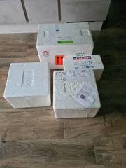 4x Styroporboxen für Fische und