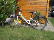 Fahrrad 24 Zoll von Pegasus