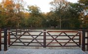 61 Englisches Tor London Pferdezaun