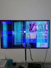 Samsung 55 Zoll UE55ES6001W für