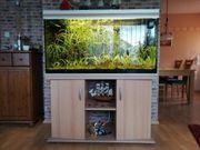 Aquarium 360 Liter komplett mit