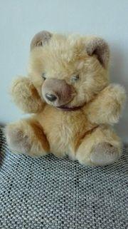 Teddybär Flauschiger Bär Knuddelbär Kuschelbär
