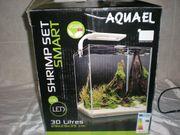 Aquarium Shrimps Becken