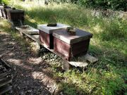 Dadantbeuten aus Bienestandauflösung