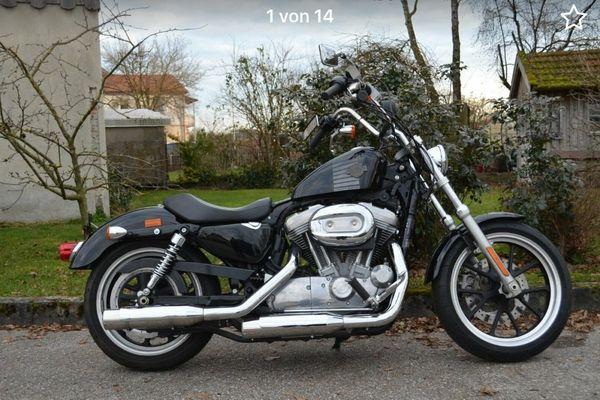 Harley Davidson 883 Low 1