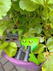 Gartenmitnutzung
