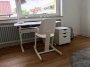 Moizi Büro-Set
