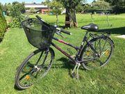 Fahrrad altes Fahrrad Rad