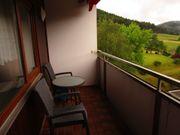Wunderschönes Appartement im Schwarzwald mit