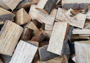 Brennholz Feuerholz Kaminholz 25cm Buche