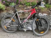 Mountainbike Mistral