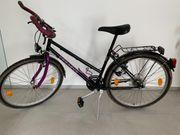 PEGASUS-Fahrrad für Damen Kinder