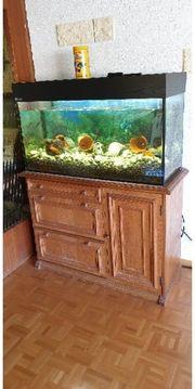 Aquarium 100x40x50hoch Schrank 110x40x80hoch