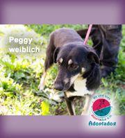 Peggy - Machst du mich glücklich