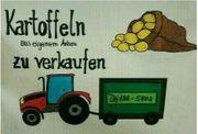 Frische Kartoffeln aus eigenem Anbau