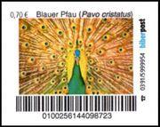 Biberpost Vögel Blauer Pfau Satz