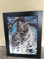 3D-Bilder Tierwelten 3er Set