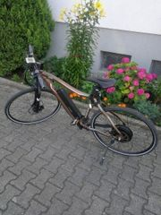 E Bike Cross NEU
