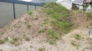 Sandiger Mutterboden Humus zu verschenken