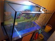 300 Liter Aquarium mit LED