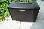 Roland AC 60 Akustikverstärker neuwertig