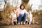 Mobiles Hundetraining Hundeschule Stuttgart Filderstadt