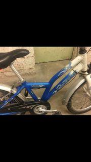 kinder fahrrad puky crusader