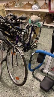 Damen Fahrrad - L241120
