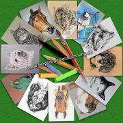 Tiermalerei nach Foto Tierzeichnungen Tierportraits