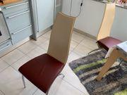 Designer Stühle sehr gepflegt echt