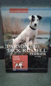 Pardon und Jack Russel Terrier