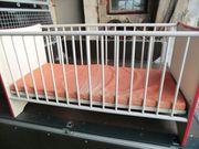 Kinderbett Bett Preis 20 EUR