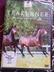 DVD Trakehner