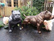 Bully-Statuen sitzen