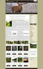Homepage erstellen CMS Website DSGVO