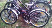 3 Fahrräder zvk