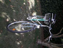 28er Damenfahrrad von SURSEE: Kleinanzeigen aus Mannheim Gartenstadt - Rubrik Damen-Fahrräder