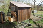 EIGENBAU - Mobiler Hühnerstall für bis