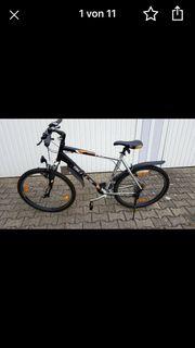 Fahrrad Bulls Sport 1 50