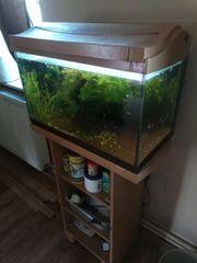 Aquarium 60 Liter mit Unterschrank