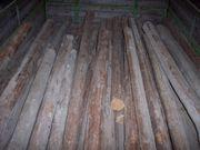 Tanne - Douglasie - Holzstangen Holzpfähle D