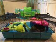 Hamsterkäfig mit viel Zubhör