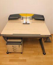 Moll Ahorn Schreibtisch inkl Moll