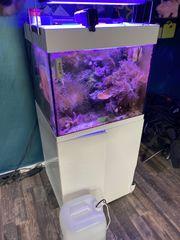 Aqua Medic Salzwasser AQ mit