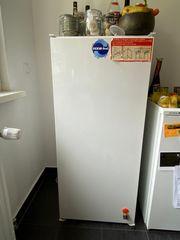 Einbau- Freistehender Kühlschrank