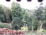 Helle sehr schöne 3-Zi-Stadtparkwohnung