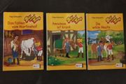 3 Bibi und Tina Bücher