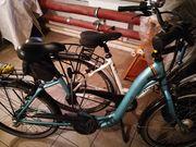 Prophete E Bike